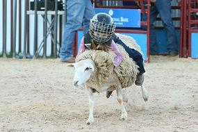 hot_fair__rodeo_10-10-18_06(2).jpg