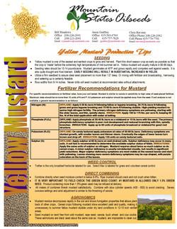 2014 CULINARY MUSTARD PRODUCTION TIPS.jpg