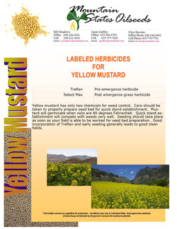2014 CULINARY MUSTARD LABELED HERBICIDES TIPS.jpg