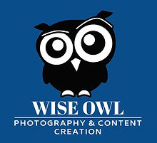 Draft Logo from Dave - Wise Owl - 21.2.2
