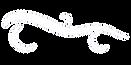websitecleanlogo.png