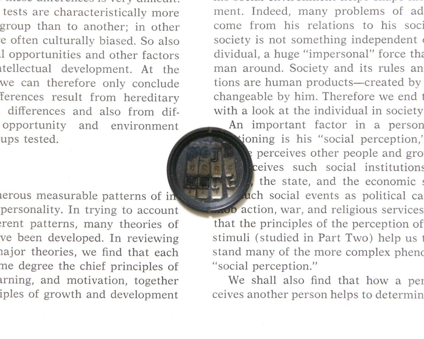 Individual in Society 5.jpg