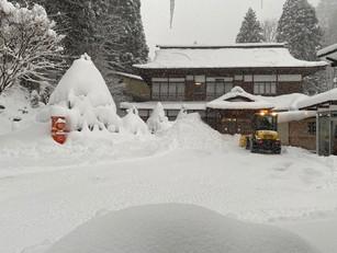 久々の積雪 40㎝!