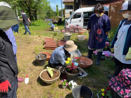 白布温泉 花植え作業