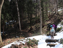 雪が残る遊歩道
