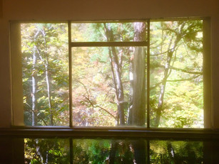 白布 散り行く秋の景色も最高!