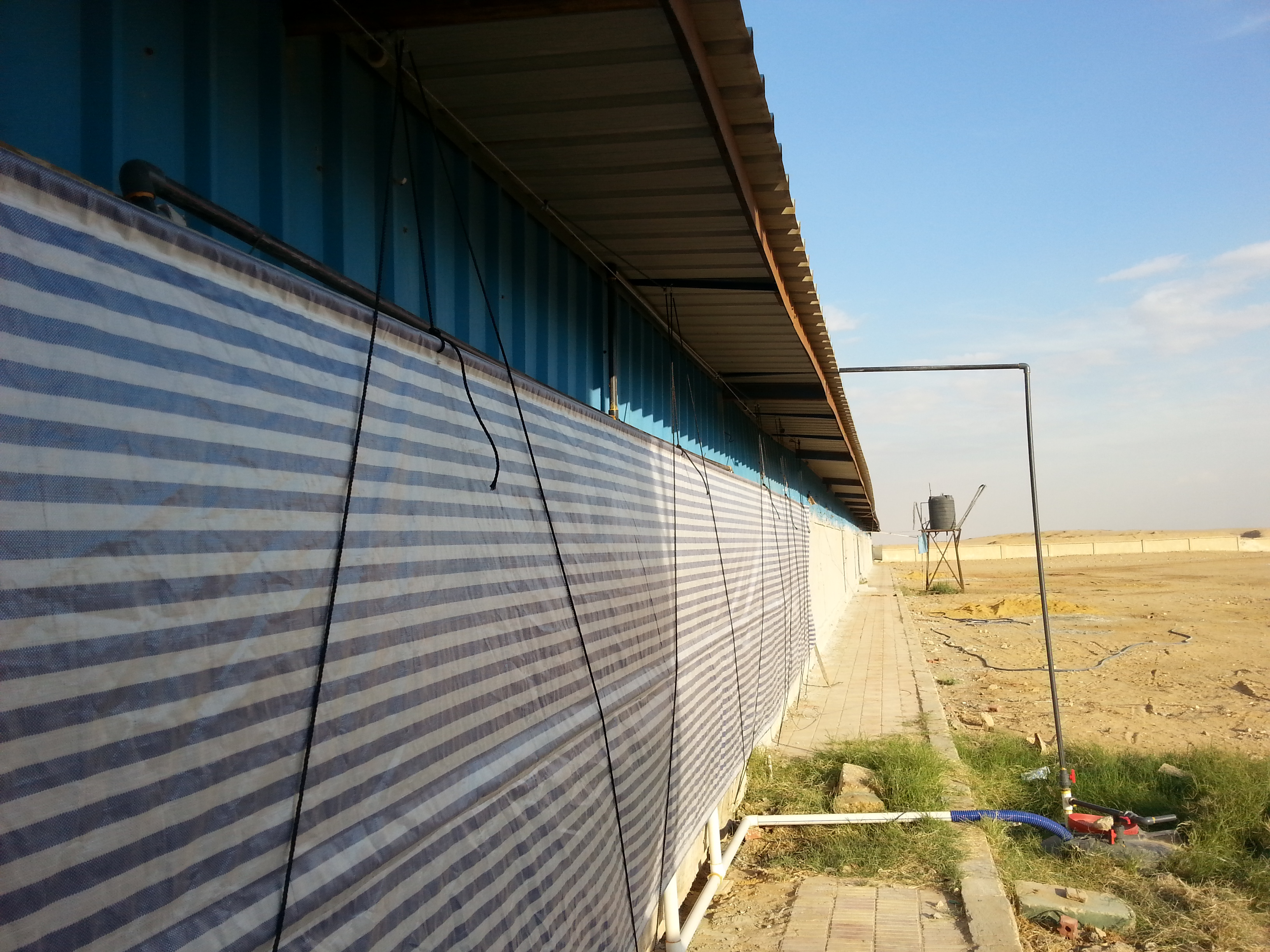Poultry House Curtain