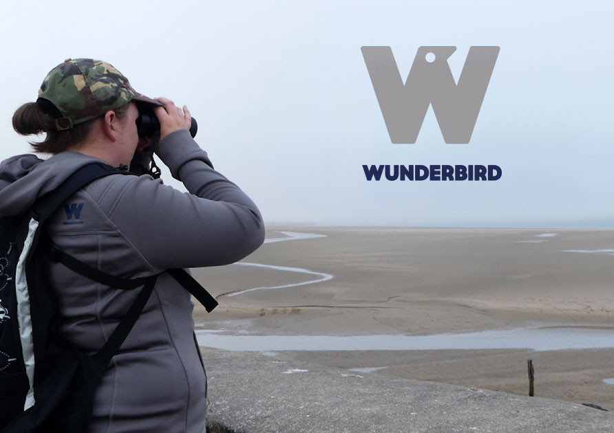 WUNDERBIRD_003.jpg