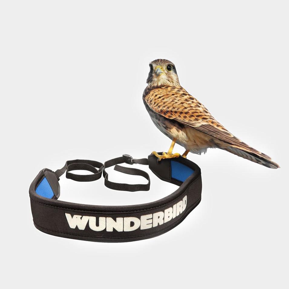 WUNDERBIRD_001.jpg
