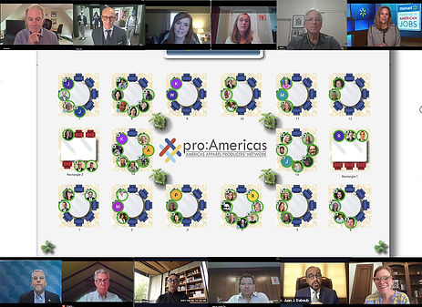 AAPN-VIrtual_Conference_collage_060321._
