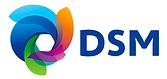 DSM_logo.png