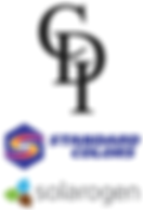 CDI_Standard_logo-1.png