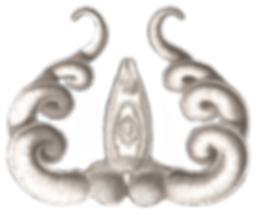Haeckel_Platodes_Bucephalus_edited_edite