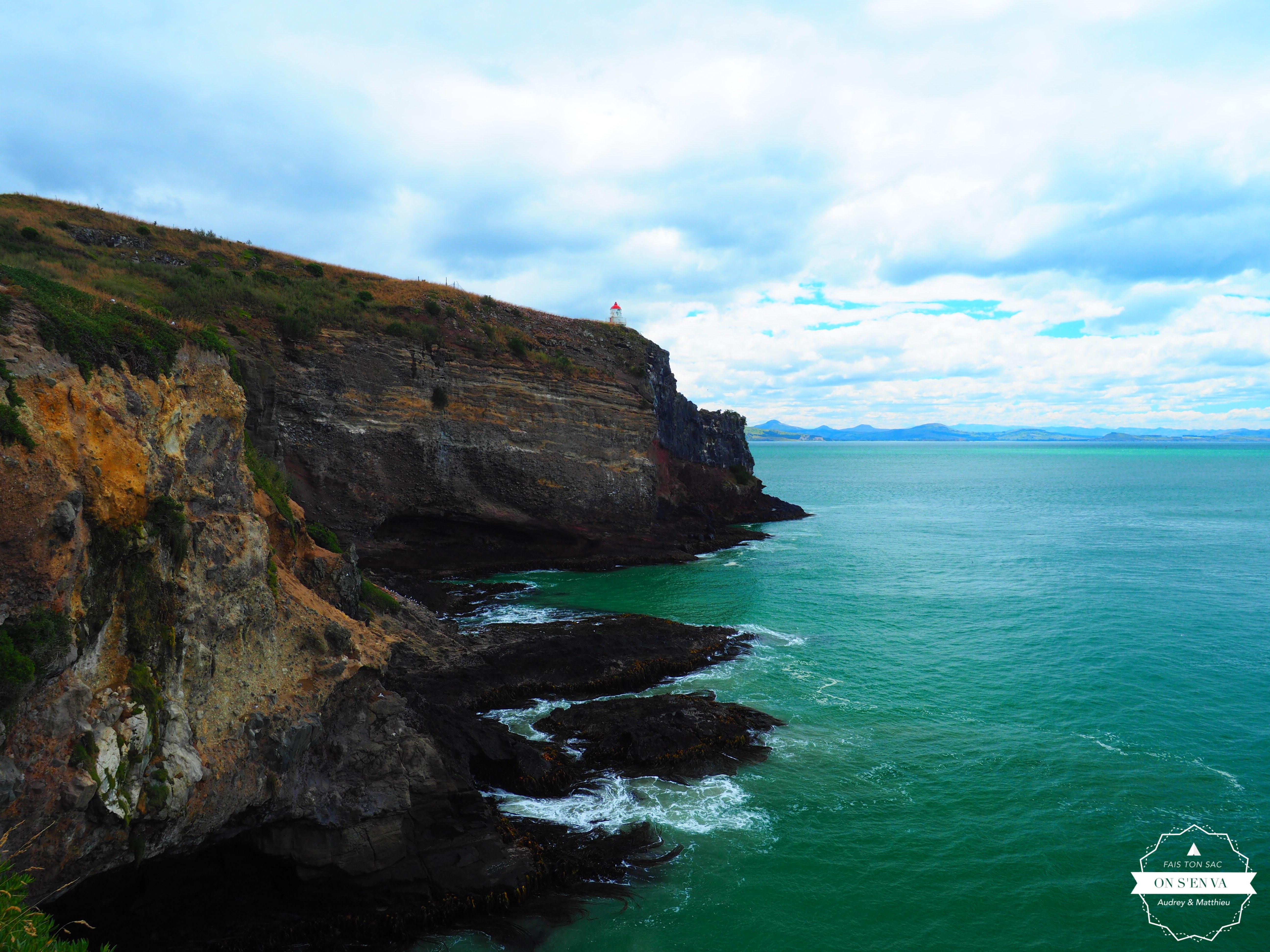 Harington Point, Otago peninsula