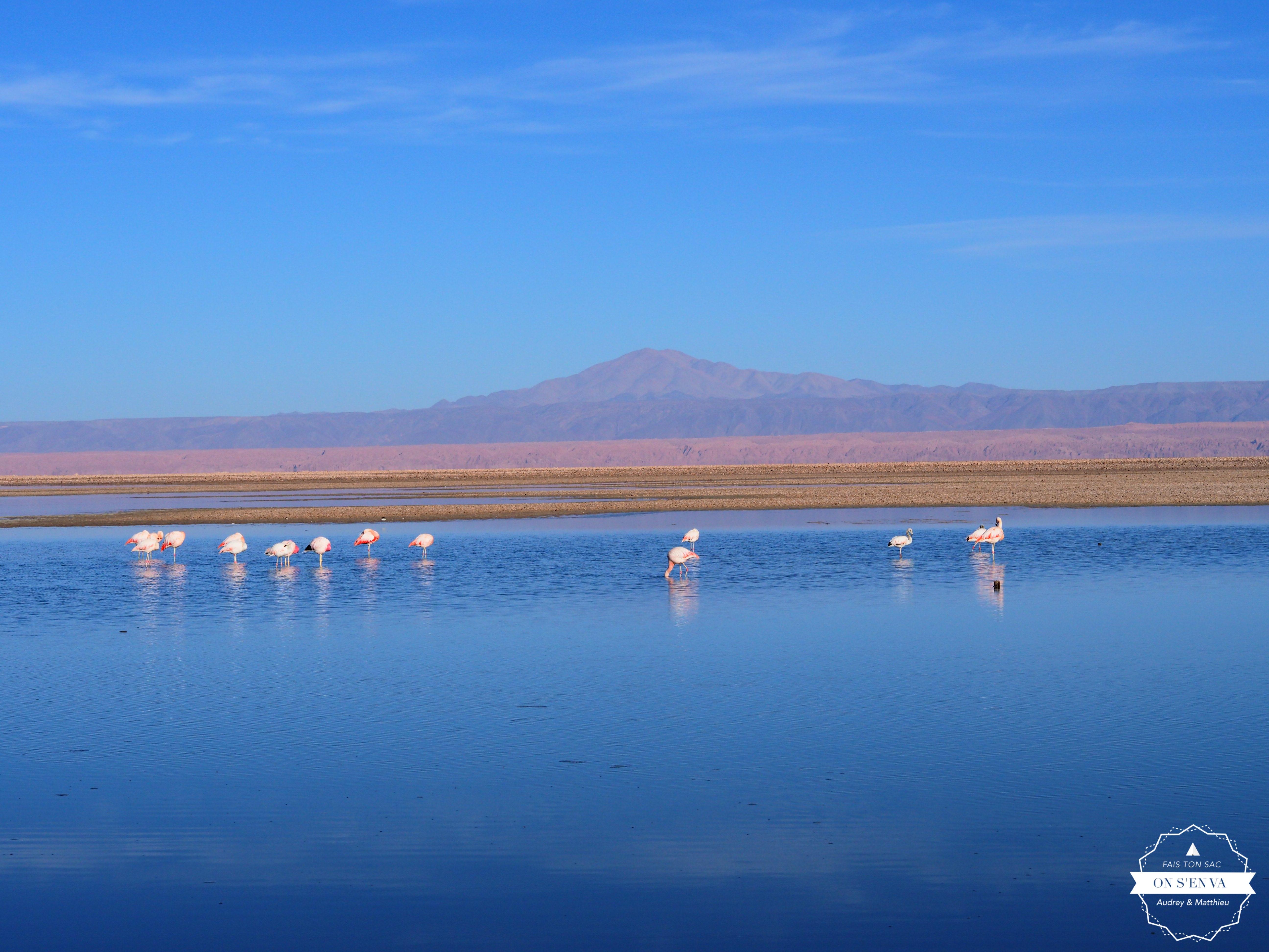 Début de journée à la Laguna Chaxas