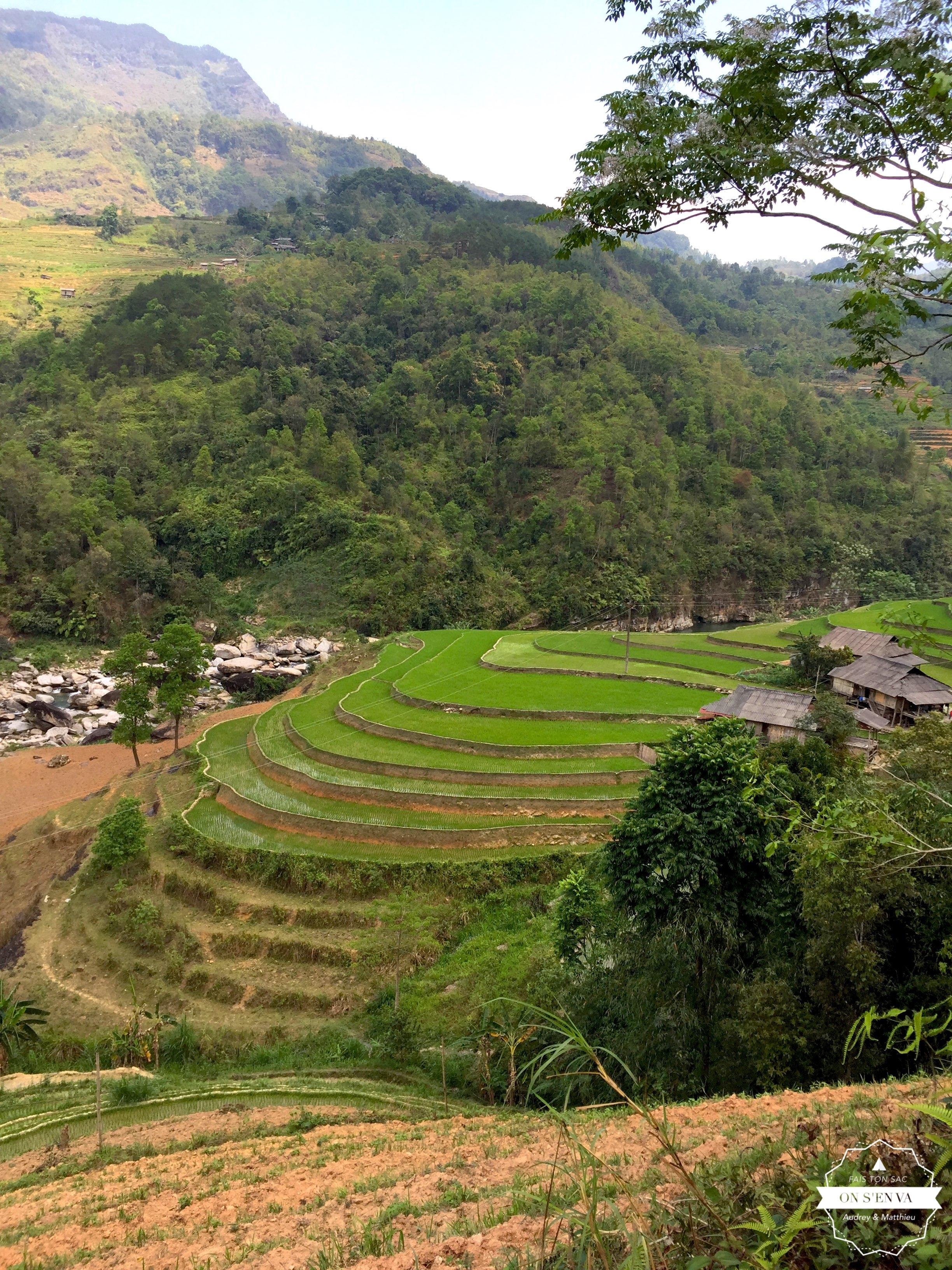 Cultures en terrasses