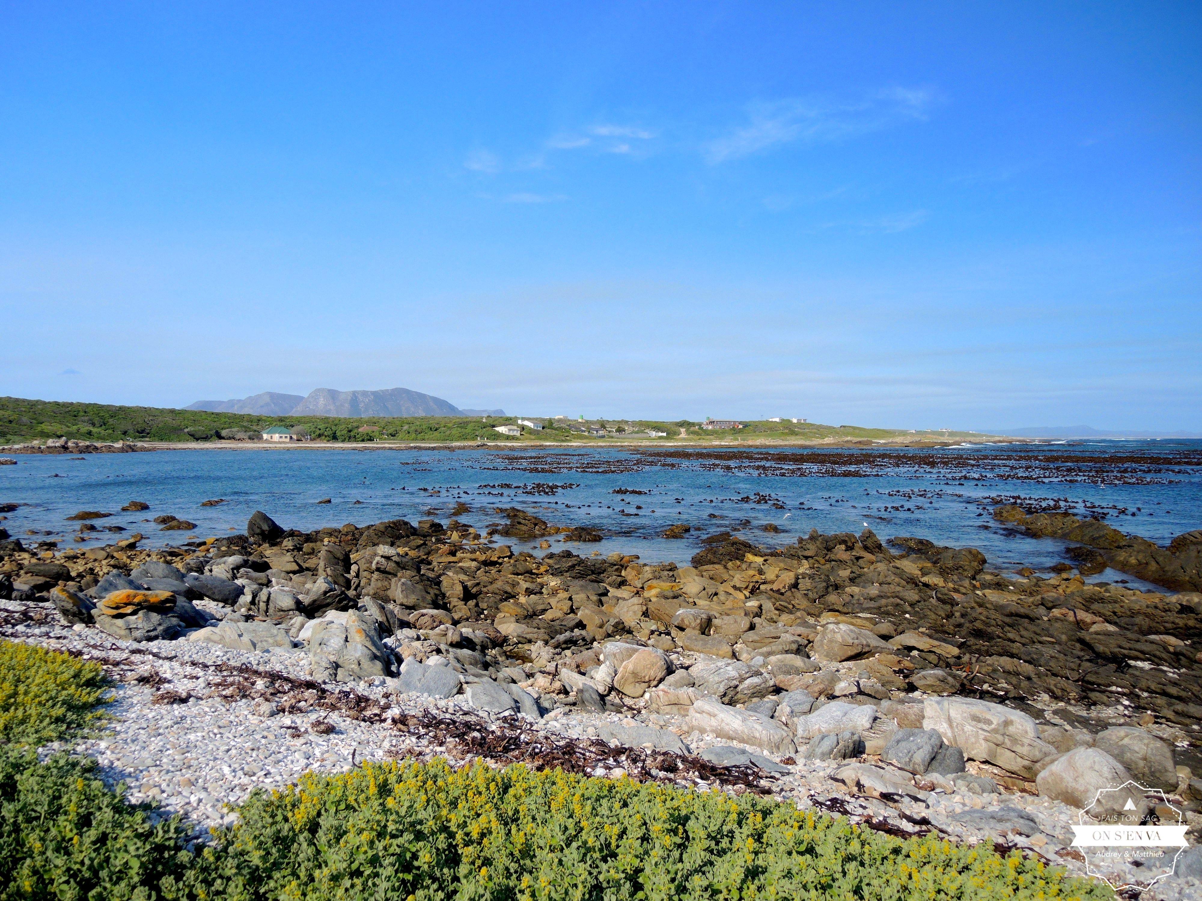 Sur la côte, près d'Hermanus