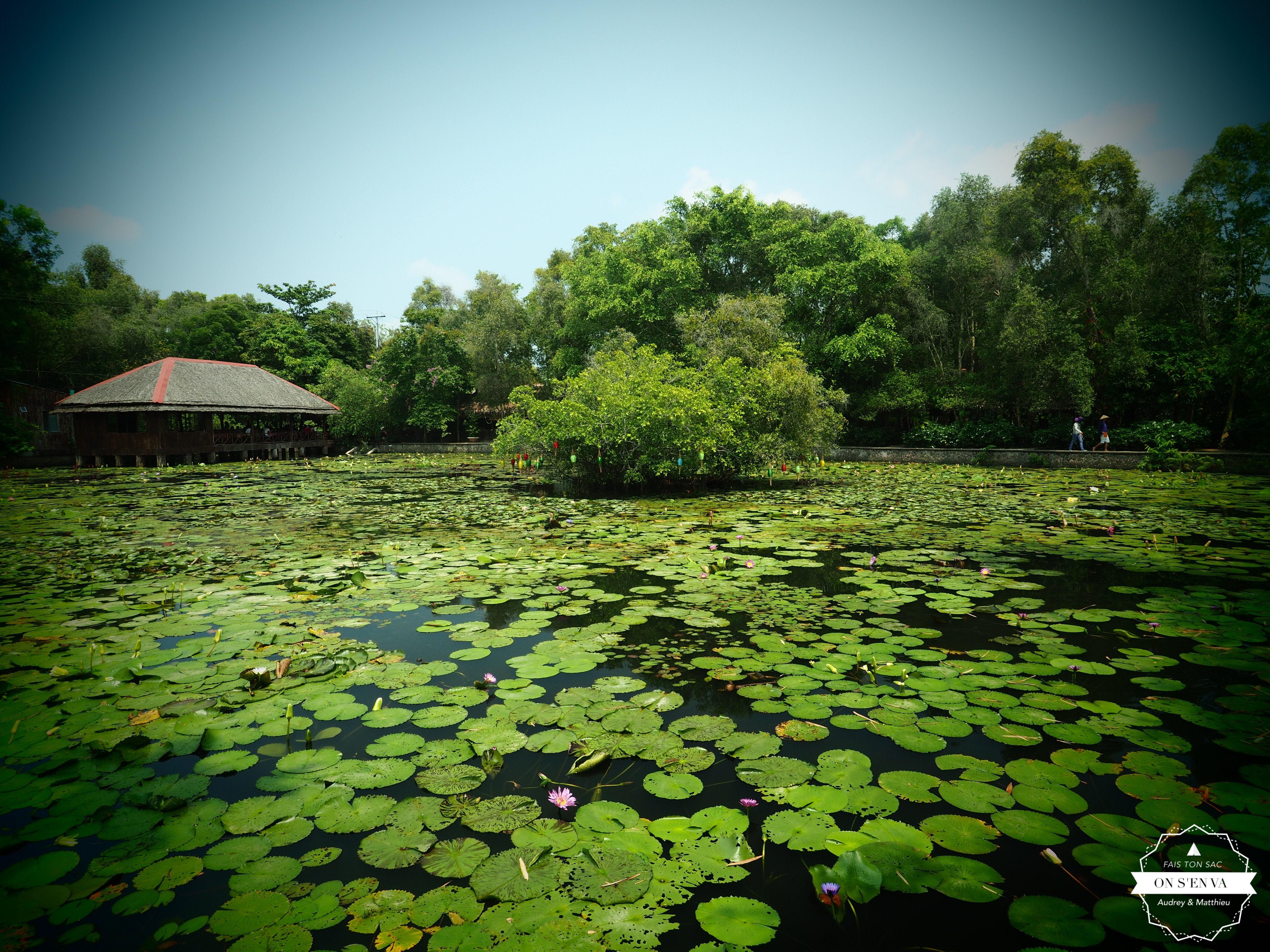 Arrivée à Xeo Quyt Forest