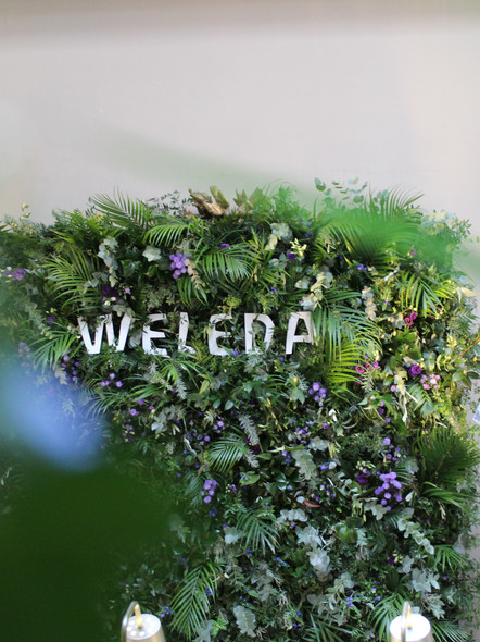 weleda - skinfood