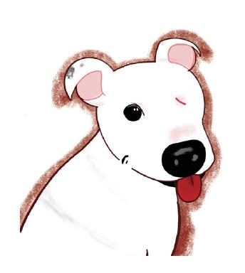 Custom Digital Pet Rendering