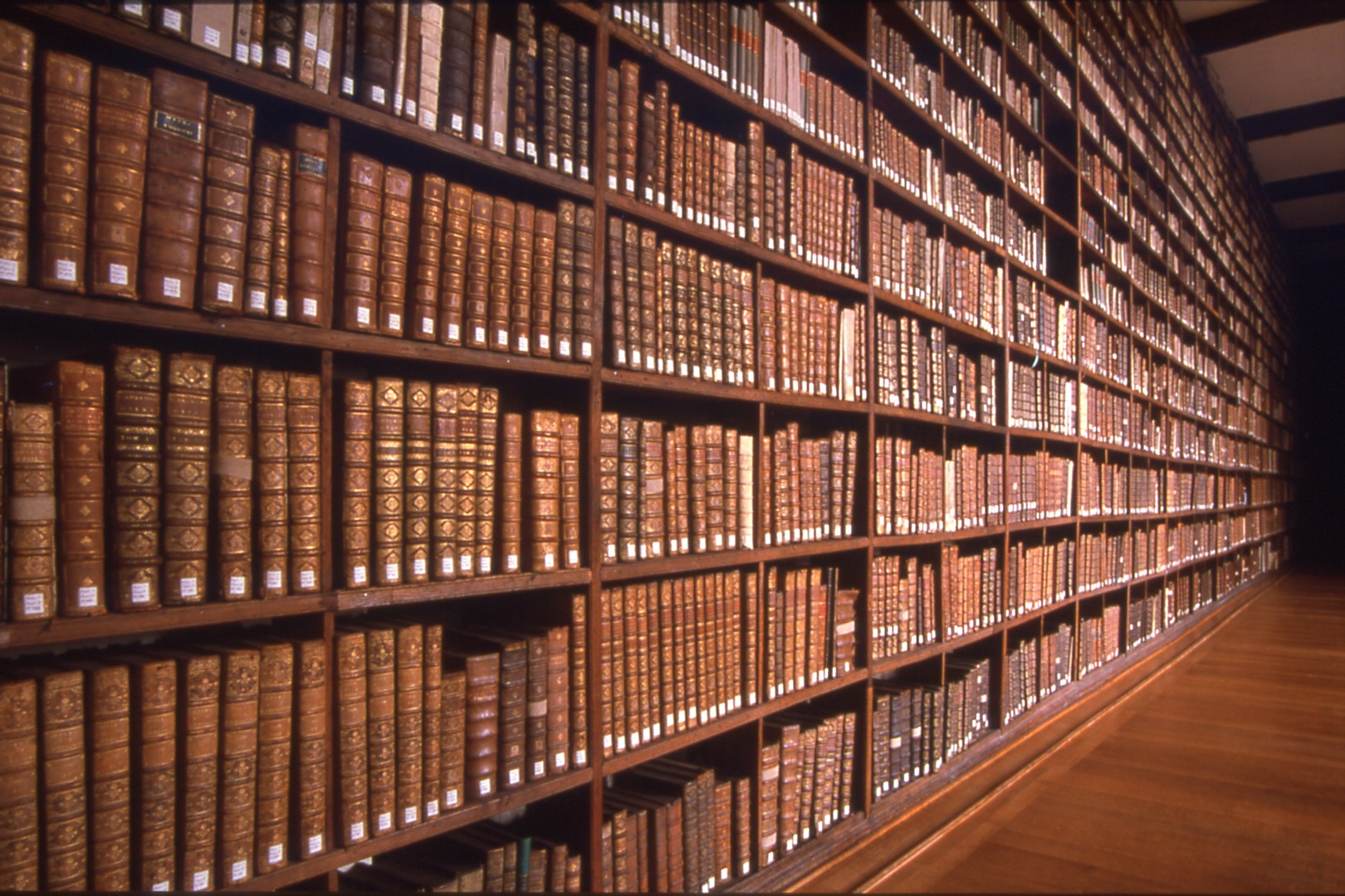 The Library; The Books
