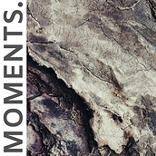 MOMENTS. (1).png
