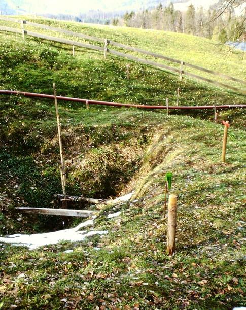 Gipsbergbau Obereck, Absenkungen und Pingen an der Tagesoberfläche, 2001, Kranabitl