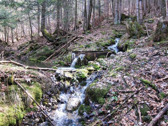 Wasserbecken mit Quelle, 04.2014, Archiv Kranabitl