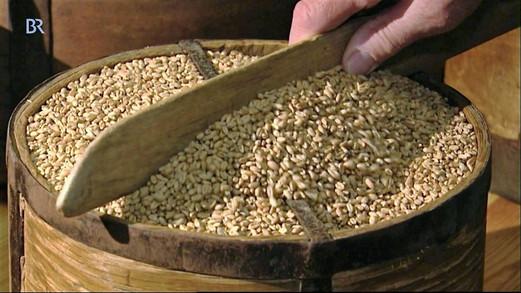 Metzenmaß für Getreide, Internet