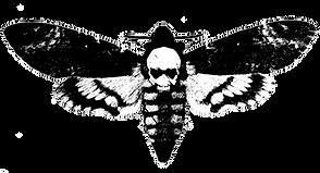 Cris Ashburn Midwifery For The Soul Death Head Moth Tarot Reader Spiritual Mentor Pagan Death Midwife Para Midwife