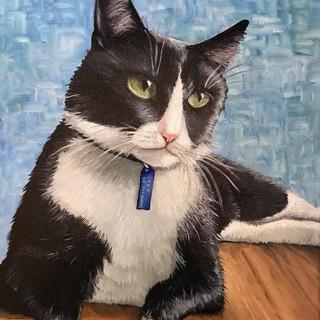 Cat Portrait #2