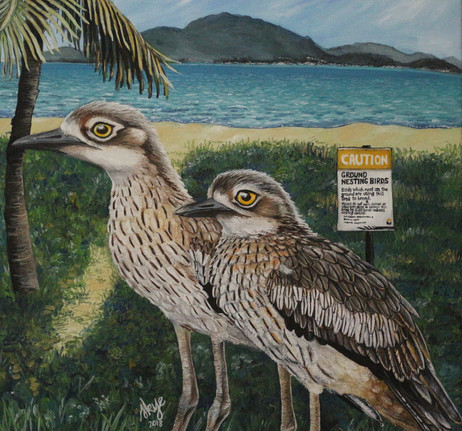 Curlews of Townsville Strand