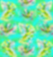 Alexandrine coloured back.jpg