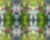 Pet Birds Tiled.jpg