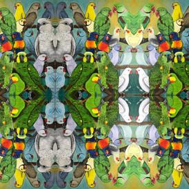 Pet Birds Tiled