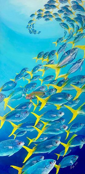 Zen Reef