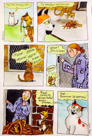 Cat comic #