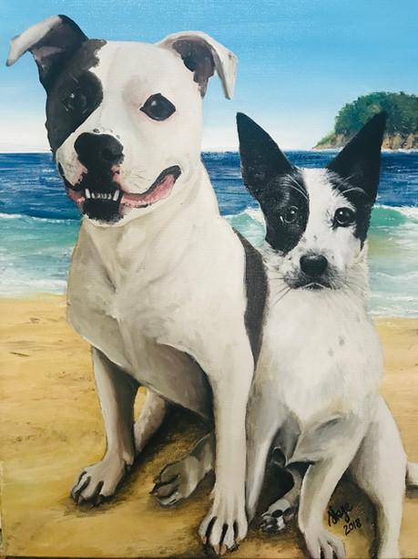Beach Dawgs