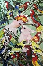 Australian Parrots.JPG