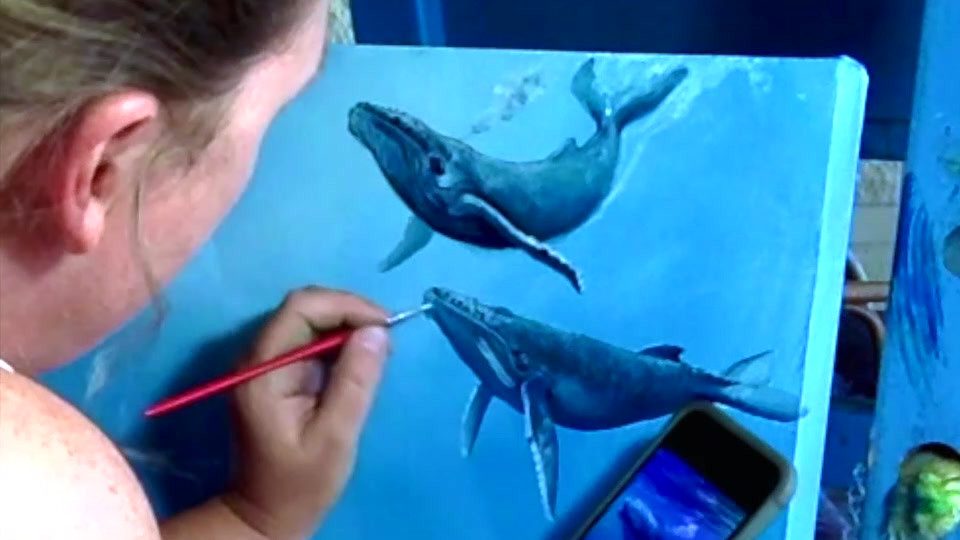 Speed Video of Humpback whales