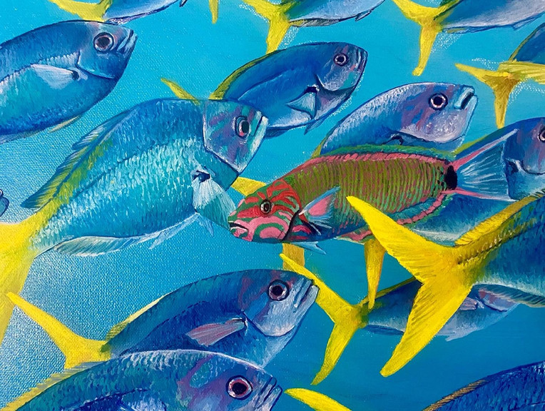 Fish mandala up close - The moon wrasse swimming against the school