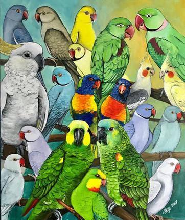 Julia's Parrots