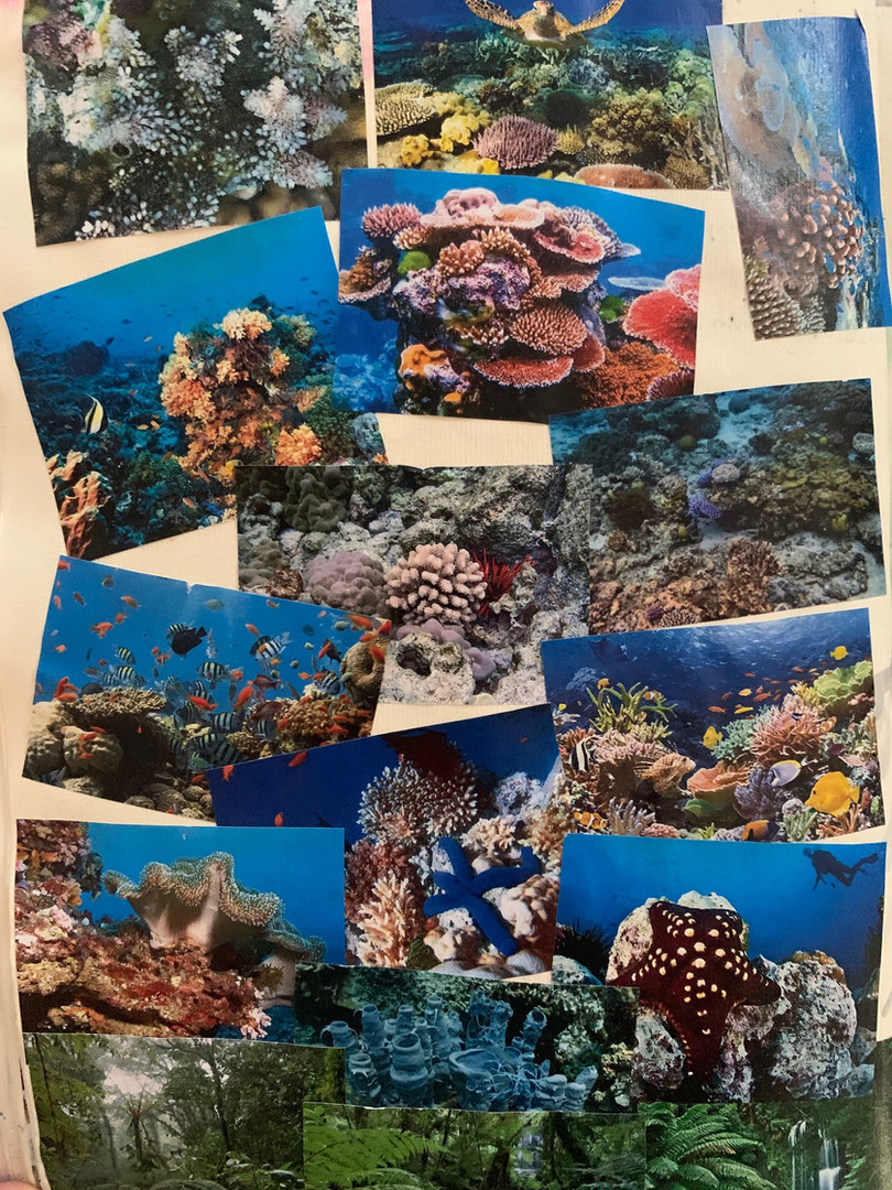 Inspiration board - Reef