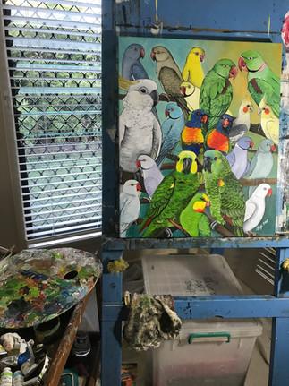 Close up of Julia's Parrots