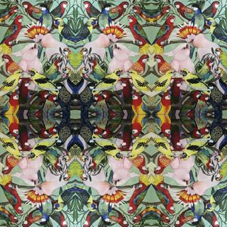 Australian Parrots Tiled