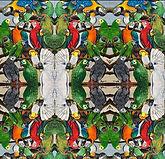 Exotic Parrots Tiled.jpg