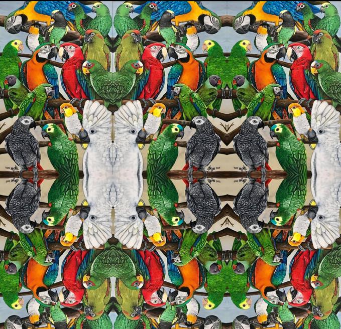 Exotic Parrots Tiled pattern