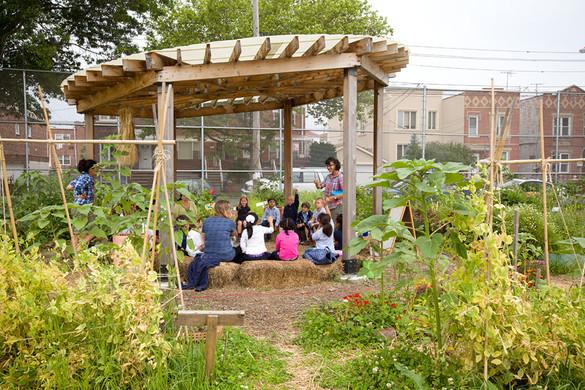 Urban Planning + Health + Education