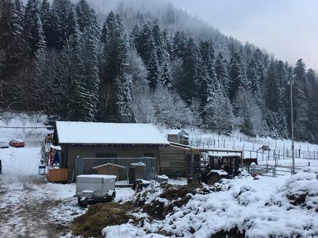 2018年12月15日纳沙泰尔学联冬季徒步