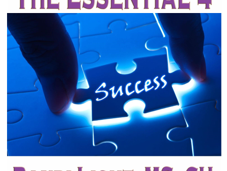 What is the Essential 4 ~ How will it help you?